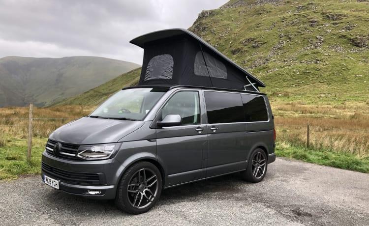 Storm – 'Hier komt de STORM' 2018 VW T6 camper