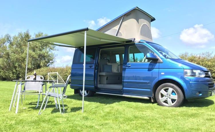 Luxury Volkswagen California Camper
