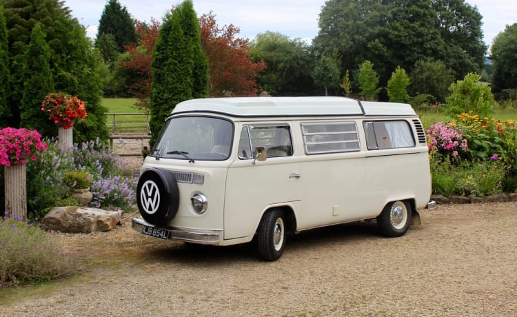 Lady Lily – Lady Lily - our classically beautiful 1973 VW T2