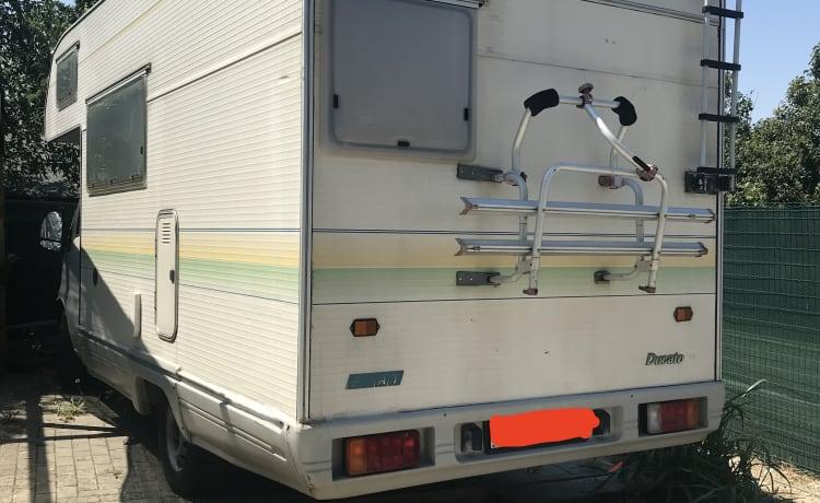 Maursac – Camper Fiat Ducato Mansardato Bologna