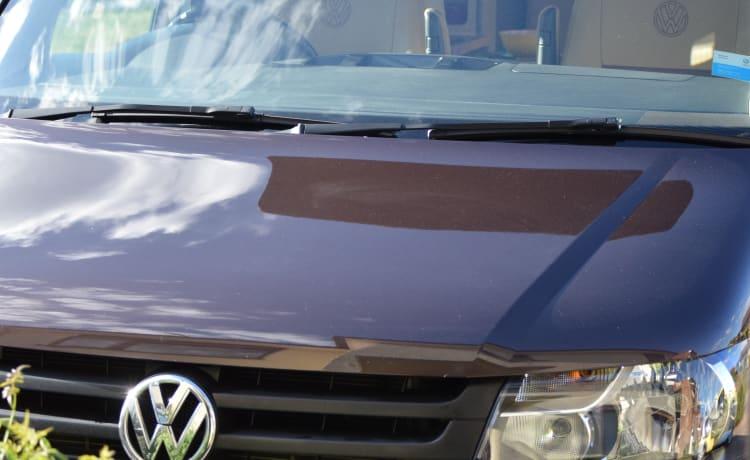 Bertie T5 VW Campervan  2015 140 High Line