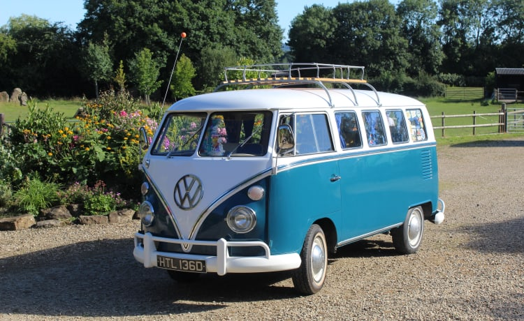 "Alfie The Splitty – Alfie The Splitty - Il nostro paravento VW T1 ""Swinging Sixties"" !!"