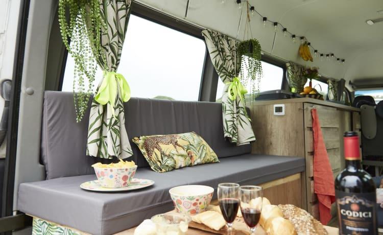 Adriaantje – Large safari-style camper van