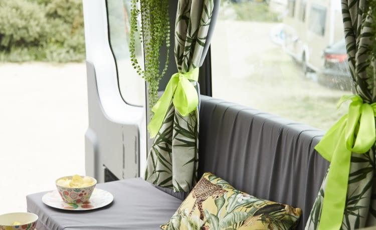 Adriaantje – Grote camperbus in safari- stijl