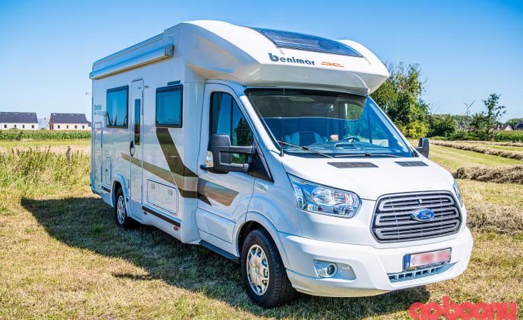 Luxe Camper Benimar Cocoon 486