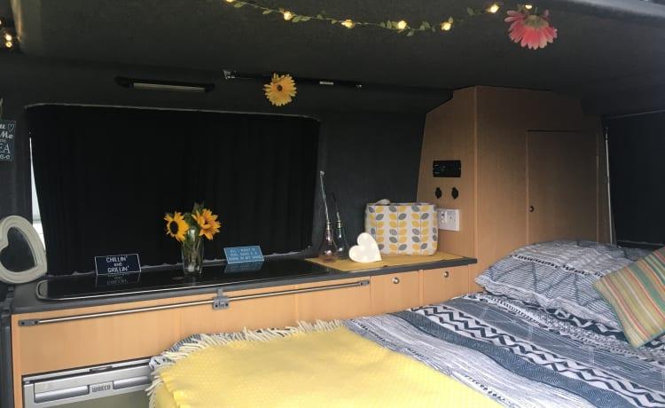 Ginny  – VW T5 2.5 Transporter hefdak voor campers