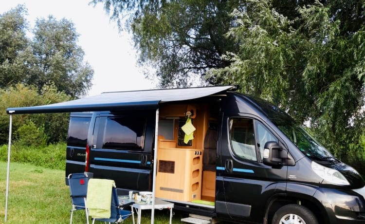 Would you like to rent a compact fully equipped bus camper?