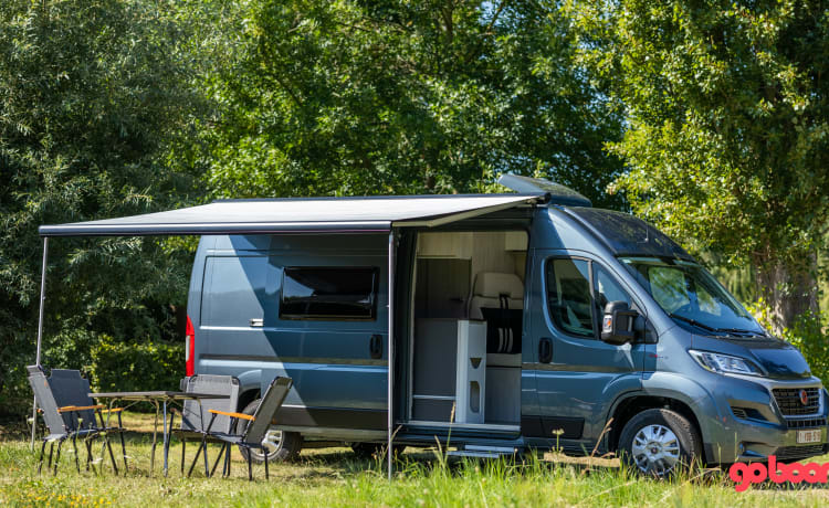 Noleggio camper nuovo - Fiat Ducato Livingstone 5