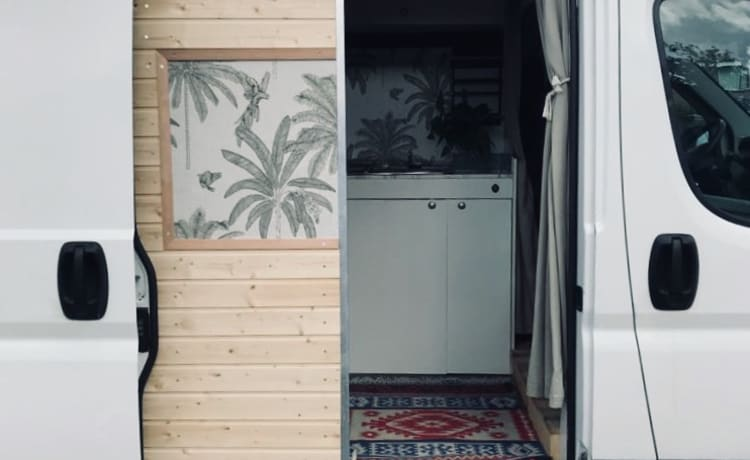 Jungle Jumper – 'Jungle' Jumper spacious road trip camper