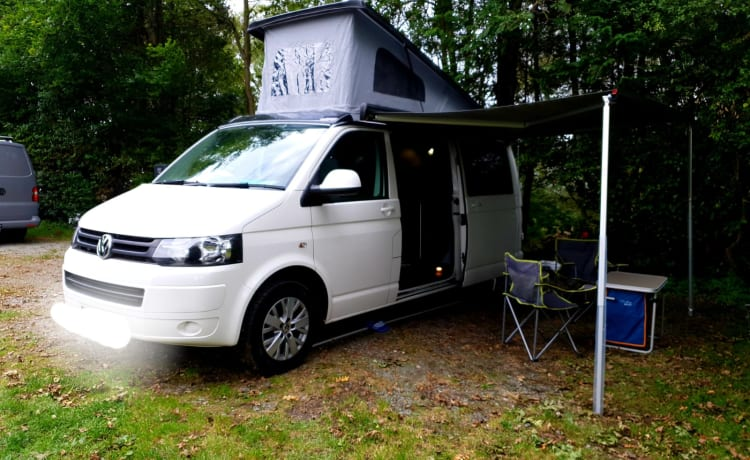 Modern and Stylish brand new VW conversion
