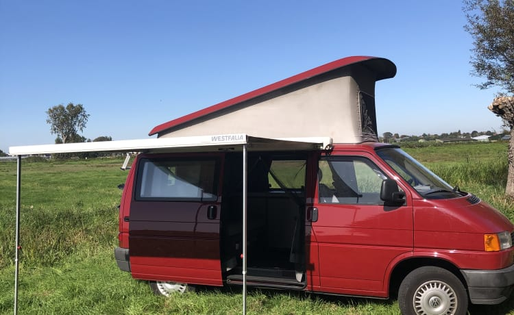 Classic VW-T4 California Coach