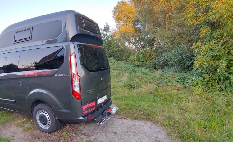 Compact Camper Westfalia Ford Nugget PLUS Automatic WITH WC
