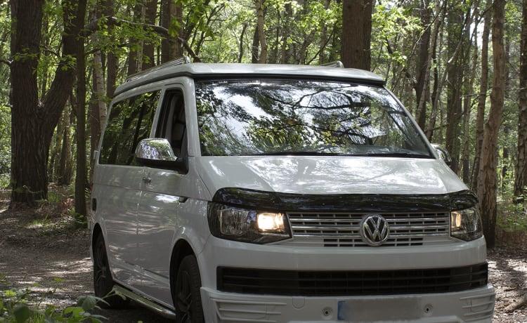 Loretta Available from 5/7 to 21/7 – Loretta VW T6-campervan in witte SWB, hefdak 4 slaapplaatsen (5 zitplaatsen).