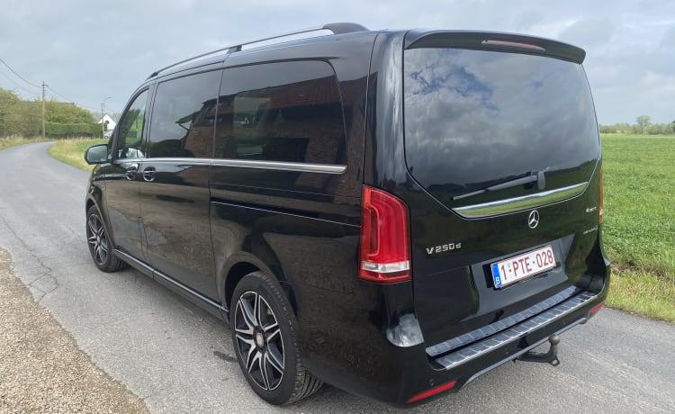 Mercedes van for short (ski) trips