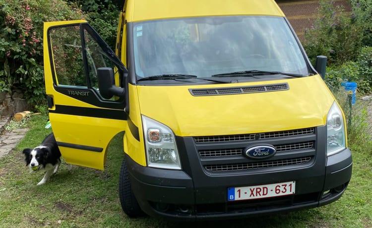 Sunny Subby – Ford Transit (furgone convertito)