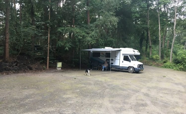 Nice camper for rent, unique thing