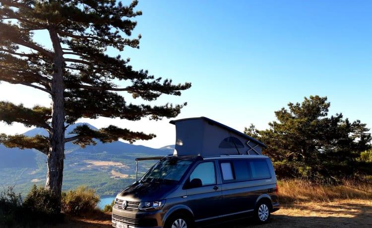California Coast rental year 2019