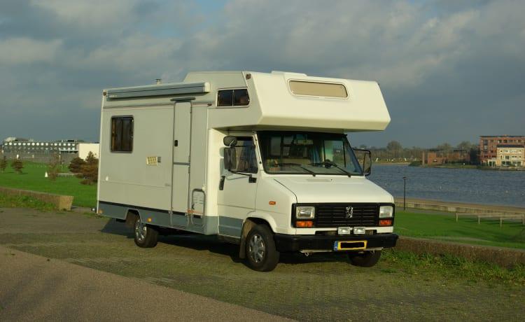 Ruime Peugeot alkoof camper