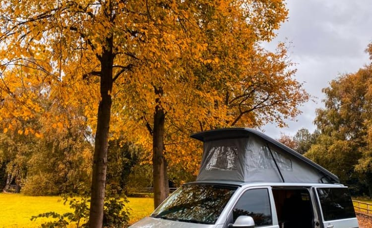 Watson – Discover with our VW Campervan Watson