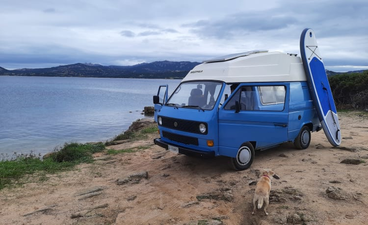 "Theo – Theo - T3 vintage camper 1.6 D ""1985"""