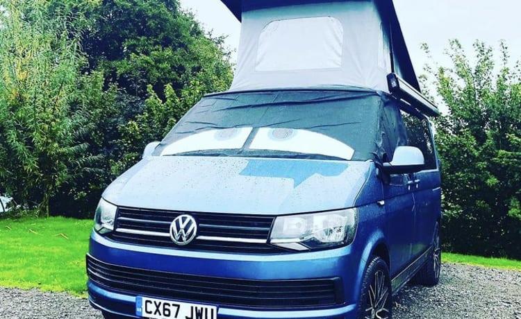 Balu - VW T6 - Head turns guaranteed