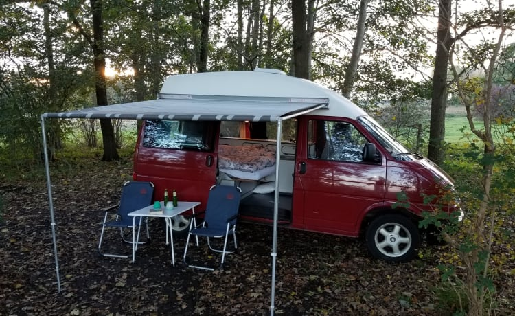 Lighthouse! Go on an unforgettable road trip with this cozy VW T4!