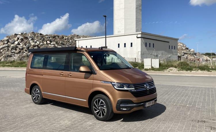 Copper Bronze – VW California Ocean T6.1