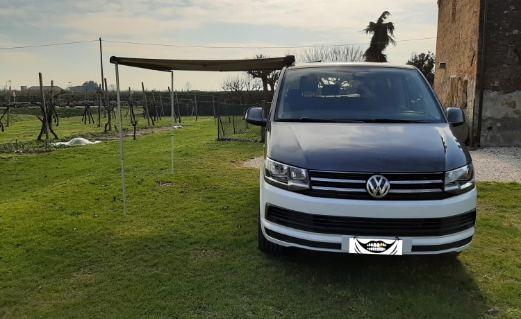 T6 caravelle camperized