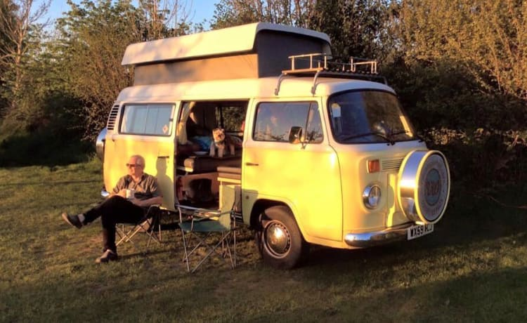 Mooie authentieke volkswagen bus te huur