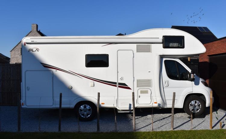 Camper familiare - Citroën PLA 440 - Camper 5/6 persone