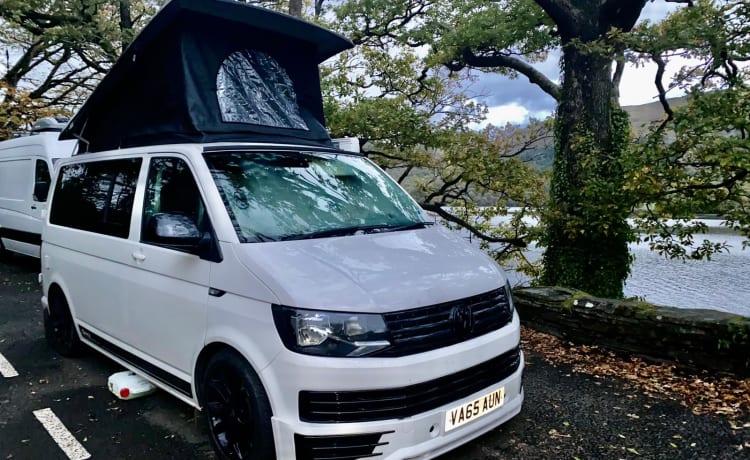 Rachel onze luxe VW T6 camper