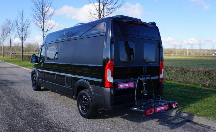 Brand new Tourne Mobil bus camper