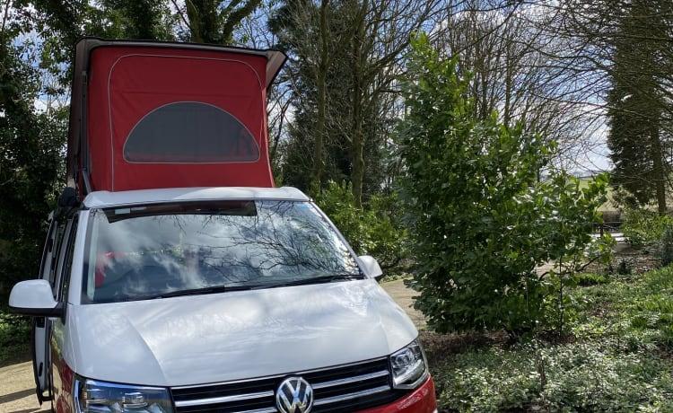 Bertie – Turn Heads In The Original VW Cali!!