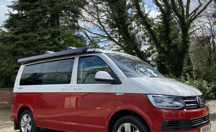 Bertie – Verander de hoofden in de originele VW Cali !!