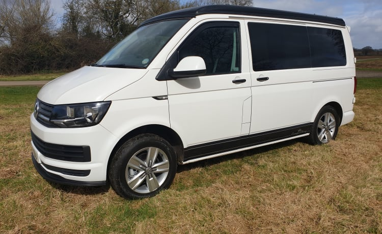 Vinnie – 2 - 4 Berth Modern Stylish Luxury VW Camper King Family Friends Pets