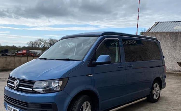 Camperbert – 4 Berth Auto VW afgewerkt volgens de hoogste normen en huisdiervriendelijk