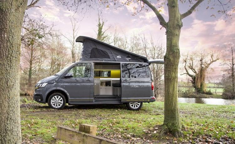 Holly – VW Camper T6.1 SWB
