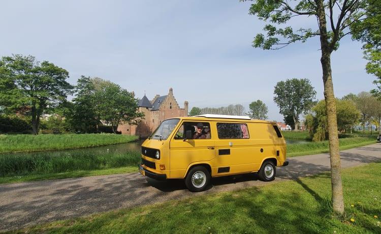 't giele buske – Yellow T3 camper