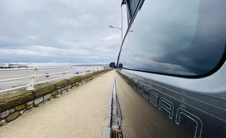 Bamper – 2021! California Ocean DSG!
