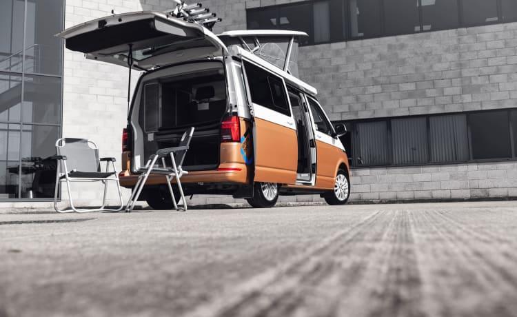 VAN MORRISON – YN20ECV VW CALIFORNIA CAMPER RENTAL, SUPER HIGH SPEC INC BIKE RACK