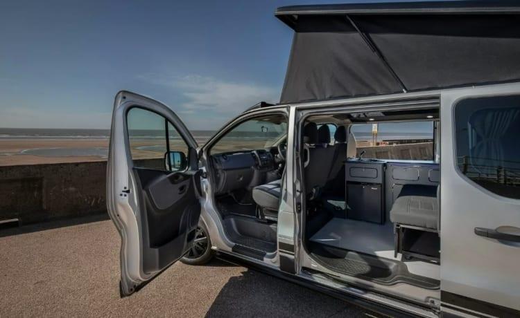 Stan the Van – Camper dog friendly, 2-4 posti letto, 6 posti recentemente convertito
