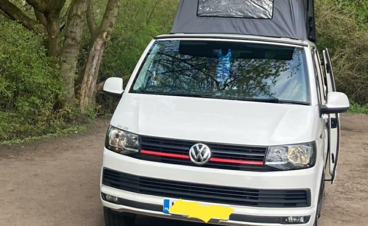 Hula Jane – Volkswagen T6 Capervan