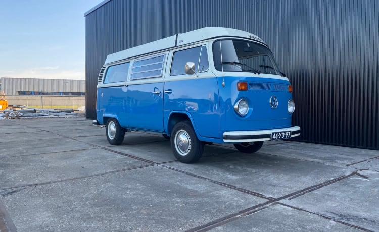 Bus Colorado – Volkswagen T2b, 1975