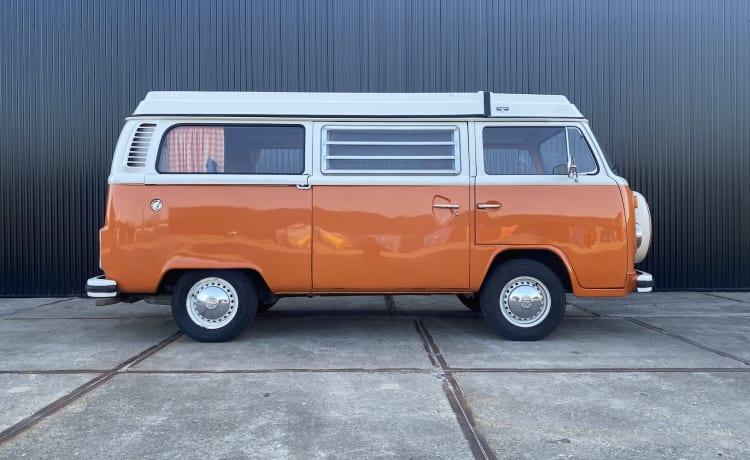 Bus Texas – Volkswagen T2b, 1974