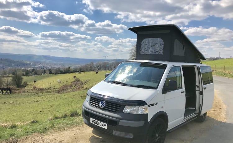 Bing – 4-persoons VW T5 pop-top campervan