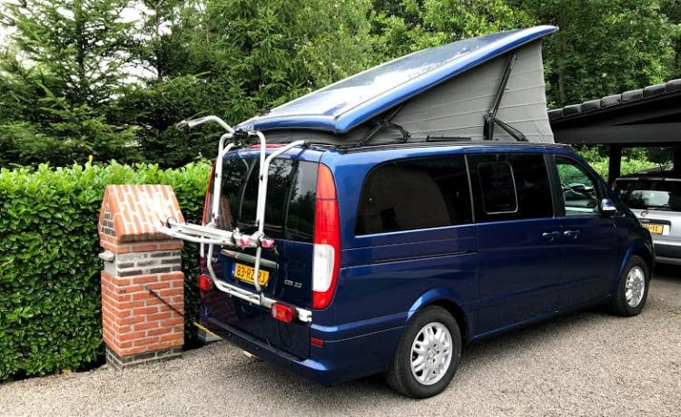 Camper Mercedes Westfalia Bus con tetto a soffietto
