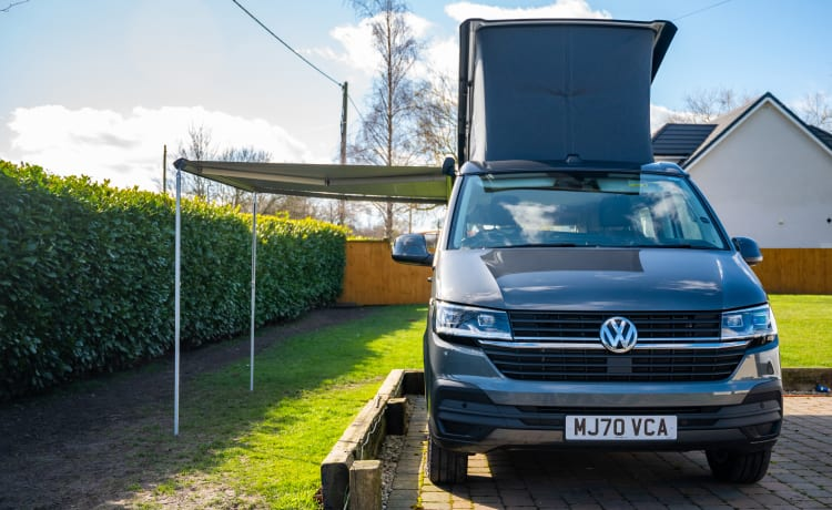 Billy – Brand New VW California Camper