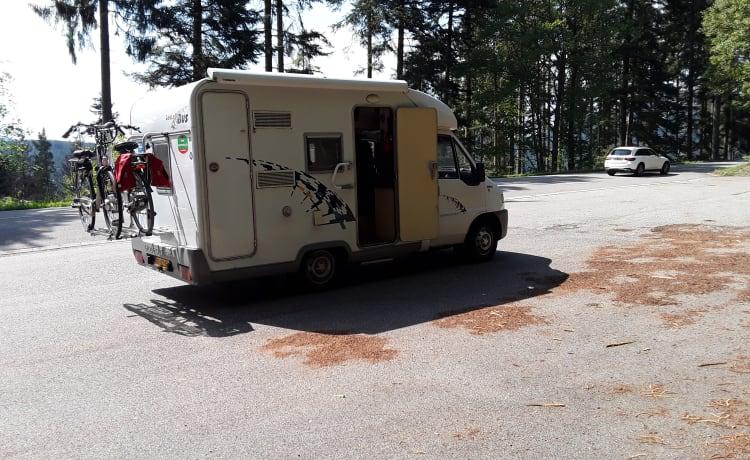 Globetrotter – Goede  Wendbare Compacte Camper