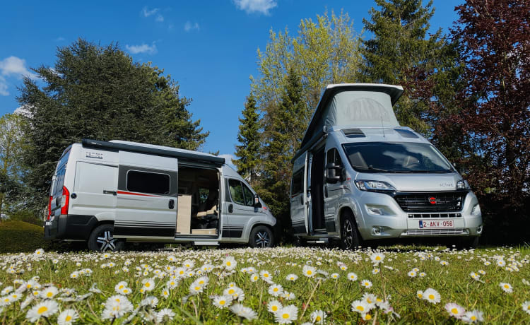 Bus camper Burstner Campeo Roadrunner POP-UP