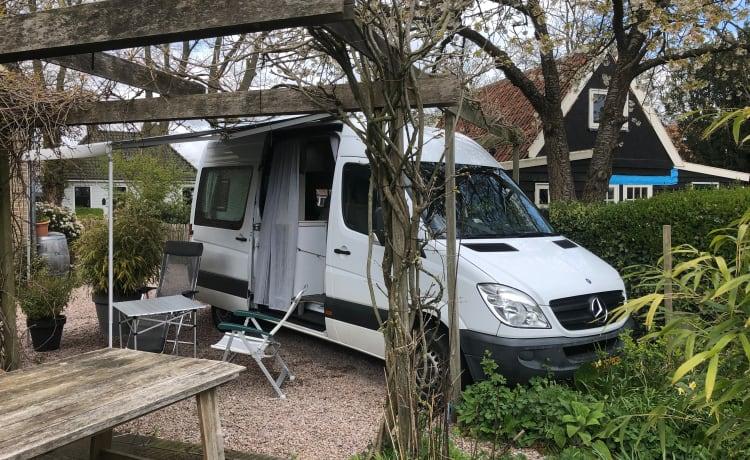 Levenskunst-bus – Mercedes camper for bon vivants. Fully equipped.